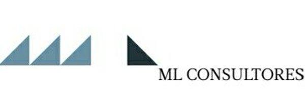 ml consultores
